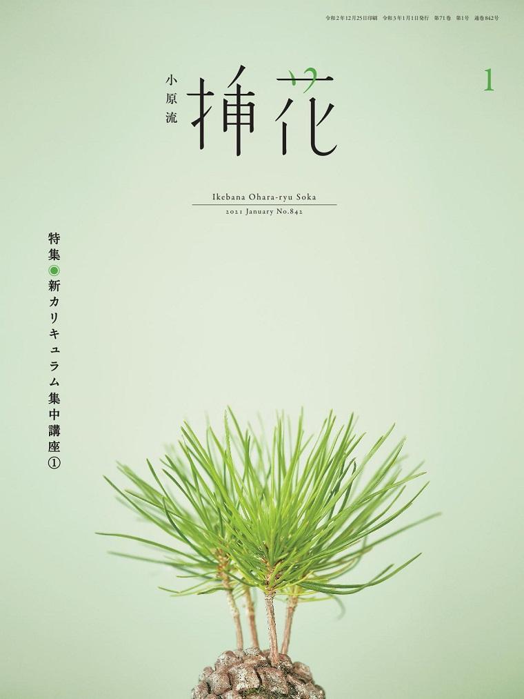 Ikebana Ohara-ryu Soka 小原流插花 日本PDF插花艺术杂志 2021年01月号 52页