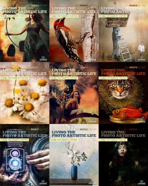 Living The Photo Artistic Life 摄影艺术画册 2020年合集(全12本)