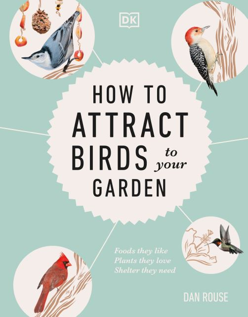 How to Attract Birds to Your Garden by dk