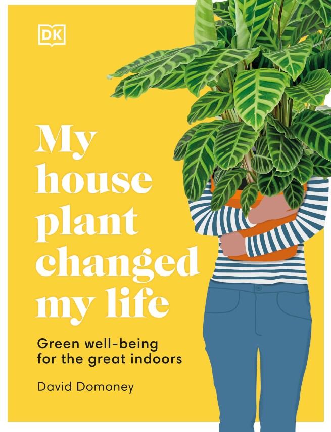 my house plant changed my life DK2021